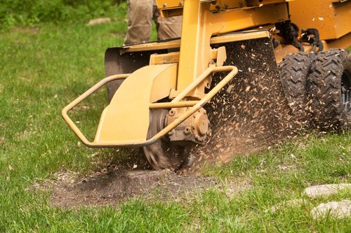 dll-stump-grinding-removal